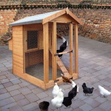 Henhouse with optional nest box